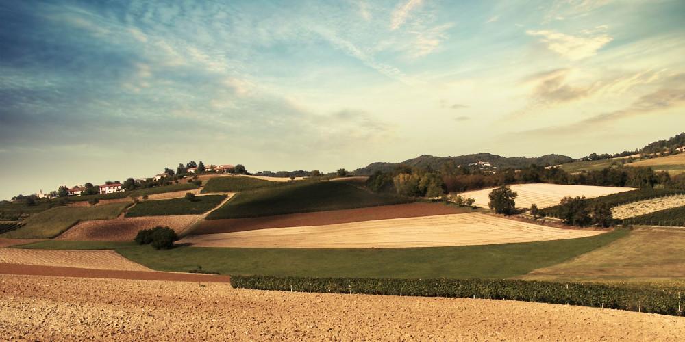 Monferrato, Patrimonio Mondiale dell' Umanità